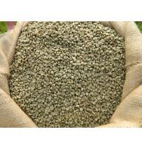 Yeşil Kahve Çekirdekleri & Fiyat Bilgisi